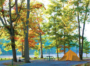Camping Douthat State