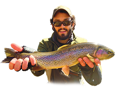 rainbow trout, caught by William Hodges