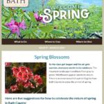 Bath consumer March 2021 eNL